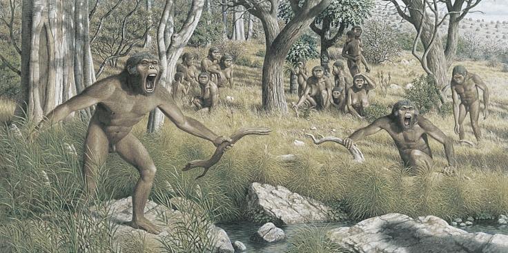 australopithecus-family