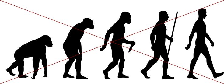 wrog evol